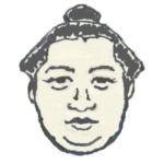 【大相撲】平成30年11月場所の感想 ~ またまた横綱がいない場所に
